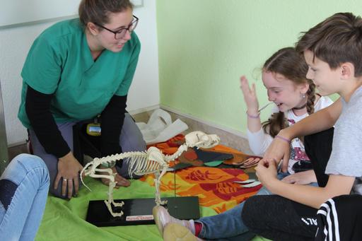Anatomie-Stunde in der Kleintierpraxis Tiergarten